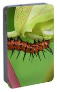 The Gulf Fritillary Caterpillar  Portable Battery Charger