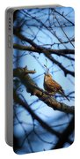 The Hiding Singer. Dunnock Portable Battery Charger