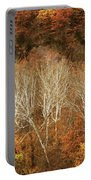 The Hills In Autumn Portable Battery Charger