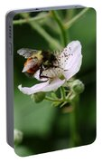 The Honey Gatherer Portable Battery Charger