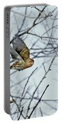 The House Finch In-flight Portable Battery Charger