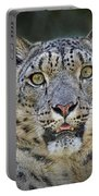 The Intense Stare Of A Snow Leopard Portable Battery Charger