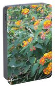 The Lantana In The Near 20 Portable Battery Charger