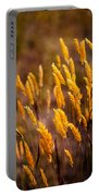 The Last Flowers Of Winter  Portable Battery Charger