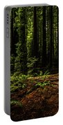 The Light In The Forest No. 2 Portable Battery Charger