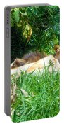 The Lion Awakes Portable Battery Charger