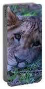 The Lion Cub Portable Battery Charger