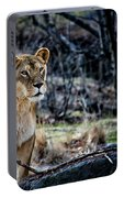 The Lioness Portable Battery Charger
