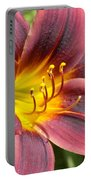 The Love Of Lilies Portable Battery Charger