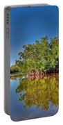 The Mangrove Coast Portable Battery Charger