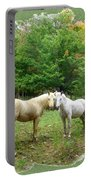The Mares Watch Portable Battery Charger