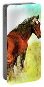 The Marvelous Mare Portable Battery Charger
