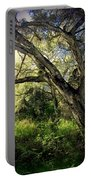 The Mighty Oaks Of Garland Ranch Park 1 Portable Battery Charger