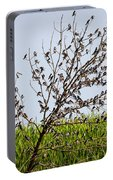The More The Merrier- Tree Swallows  Portable Battery Charger
