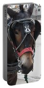 The Mule That Poses Portable Battery Charger
