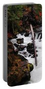The Natural Bridge Gorge Portable Battery Charger