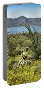 The Ocotillo View Portable Battery Charger