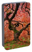The Old Japanese Maple Tree In Autumn Portable Battery Charger