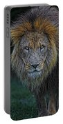 The Old Lion Portable Battery Charger