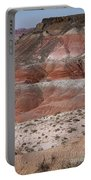 The Painted Desert  8020 Portable Battery Charger