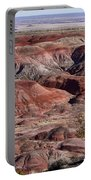 The Painted Desert  8062 Portable Battery Charger