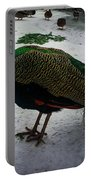 The Peacock In The Royal Garden In Winter Portable Battery Charger