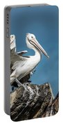 The Pelicans Portable Battery Charger