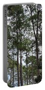 The Pines Of Tallahassee Portable Battery Charger