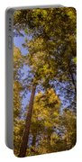 The Portola Redwood Forest Portable Battery Charger