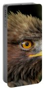 The Punk - Eagle - Bird Of Prey Portable Battery Charger