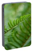 The Quiet Beauty Of Ferns Portable Battery Charger