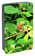 The Rasberry Patch Portable Battery Charger
