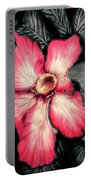 The Red Flower Portable Battery Charger by Darren Cannell