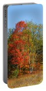 The Reds And Greens Of Autumn Portable Battery Charger