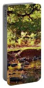 The River Lin , Bradgate Park Portable Battery Charger