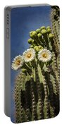 The Saguaro Cactus  Portable Battery Charger