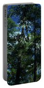 The Skyline Of Susan Creek Indian Mounds Portable Battery Charger