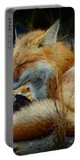The Sleepy Fox Portable Battery Charger