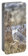 The Snowy Owl Portable Battery Charger