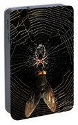 The Spider  And The Fly Portable Battery Charger