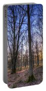The Sun Ray Forest Portable Battery Charger