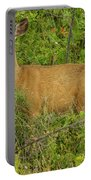 The Talking Doe Portable Battery Charger