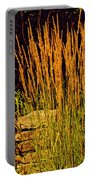 The Tall Grass Portable Battery Charger