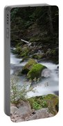 The Tananamawas Flowing Through The Forest Portable Battery Charger