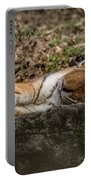The Tiger's Rock  Portable Battery Charger