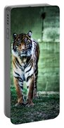 The Tigress Portable Battery Charger