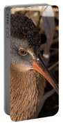 The Virginia Rail Portable Battery Charger