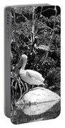 The Waterbirds Portable Battery Charger