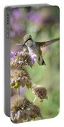 The Wonder Of Wings  Portable Battery Charger