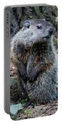 The Woodchuck Has To Pee Portable Battery Charger